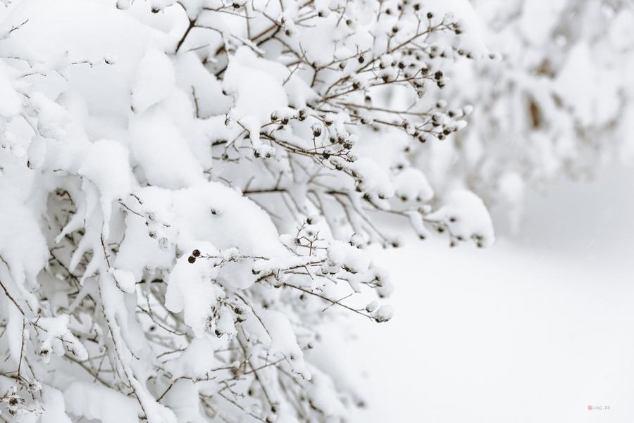 como exponer correctamente en la nieve